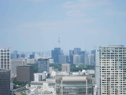 ややモヤッと見えますが東京スカイツリー