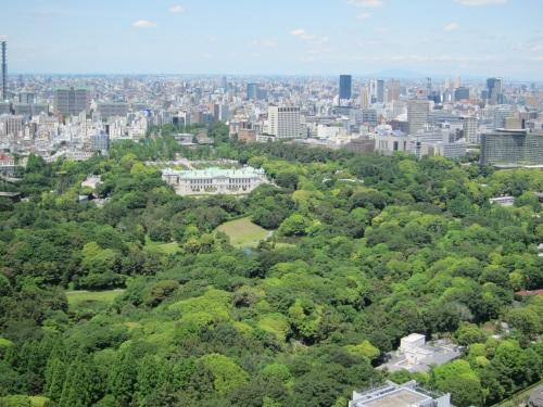 赤坂御所の緑も初夏に向かってすがすがしいです