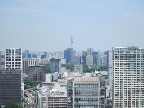 今日も東京スカイツリーはきれいに見えます