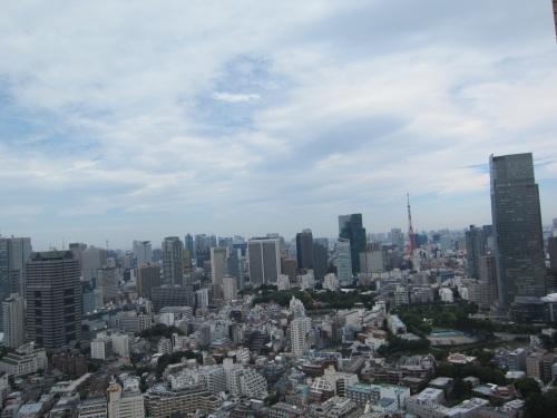 東京タワーも今日はくっきり